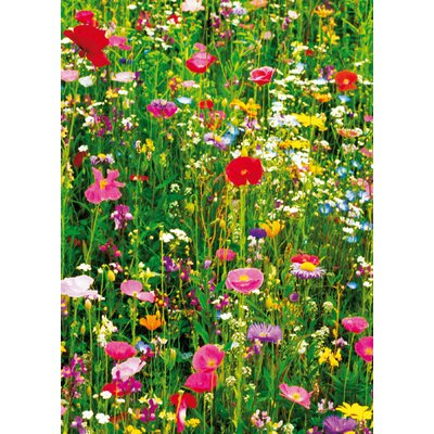 Ideal Decor Flower Field Wall Mural