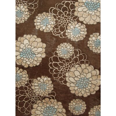 Home Dynamix Casa Bella Brown Rug