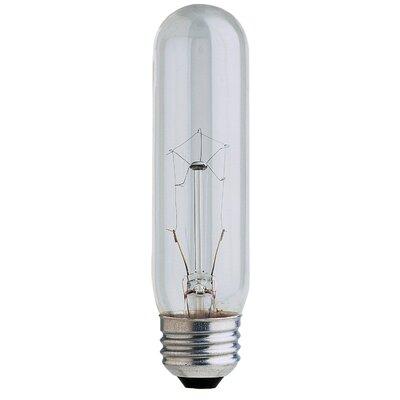 Light Bulbs Wayfair