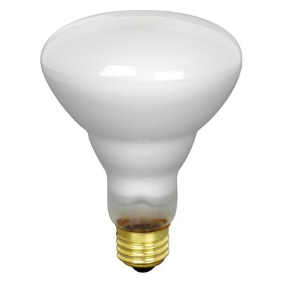 FeitElectric Track and Recessed Flood Reflector Light Bulb