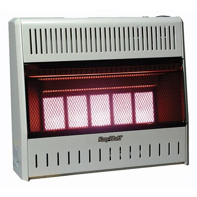 World Marketing 25,000 BTU Infrared Wall Propane Space Heater with Thermostat