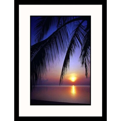 Palm Leaves and Ocean Framed Photograph