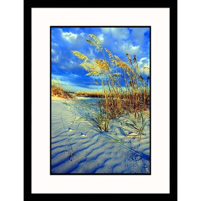 Great American Picture Sea Oats on Sand Dune Framed Photograph - Wendell Metzen