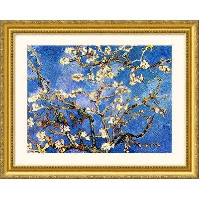 Great American Picture Branches l'Ammandier en Fleur Gold Framed Print - Vincent van Gogh