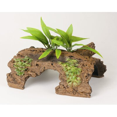 Marina Naturals Malaysian Driftwood Half Log with Plants