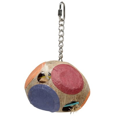 Hagen Living World Nature's Treasure Coco Foraging Tube with Closed Holes  Hookbill Bird Toy