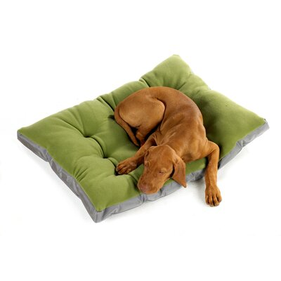 Futon Dog Bed