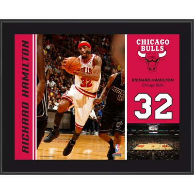 Richard Hamilton Chicago Bulls Sublimated Player Photo Plaque