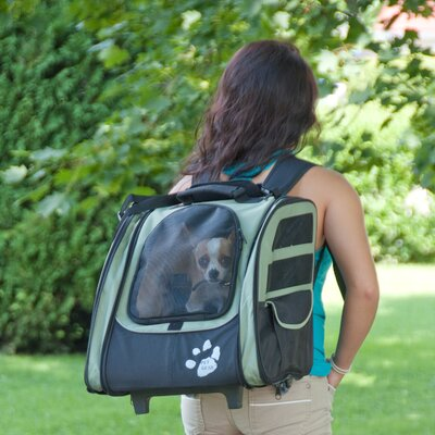 Pet Gear I-GO2 Traveler Pet Carrier in Sage