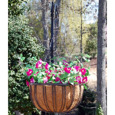 Barrington Hanging Basket