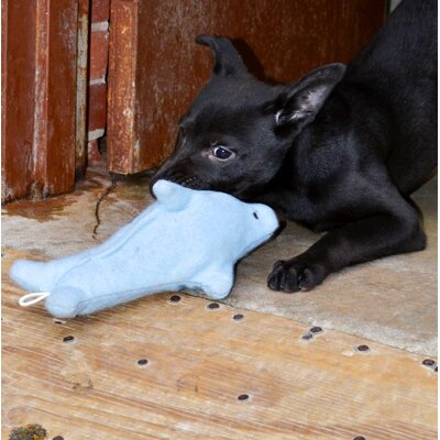 ABO Gear Bottlenose Dolphin Dog Toy