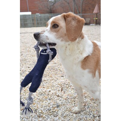 ABO Gear Smiley Bone Dog Toy