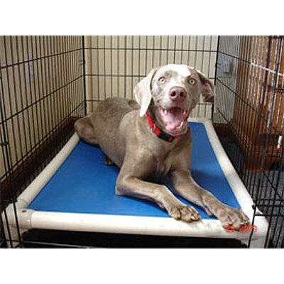 Kuranda USA Elevated Chew-Proof Crate Dog Bed
