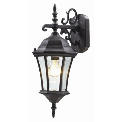 Z-Lite Wakefield 1 Light Outdoor Wall Lantern