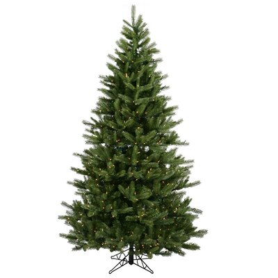"Vickerman Co. Black Hills Spruce 7' 6"" Green Artificial Christmas Tree with 700 Clear Lights with Stand"
