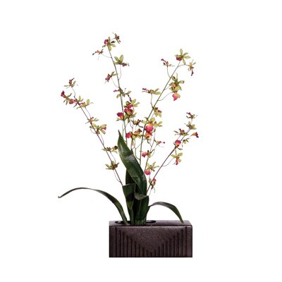 "Vickerman Co. Floral 29"" Artificial Potted Orchid in White and Pink Green"
