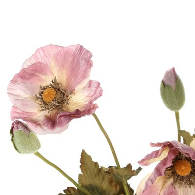Vickerman Co. Floral Plaid Poppies