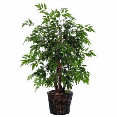 Vickerman Co. Bushes 4' Artificial Potted Natural Ming Aralia Tree in Green