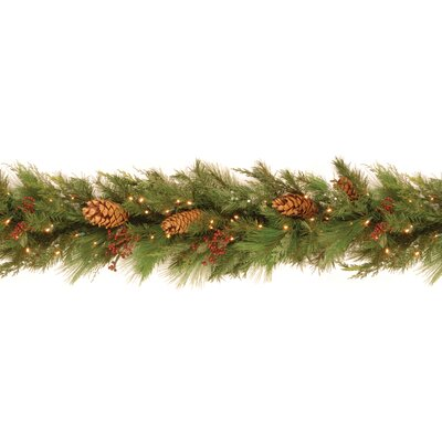 National Tree Co. White Pine Pre-Lit 6' Garland