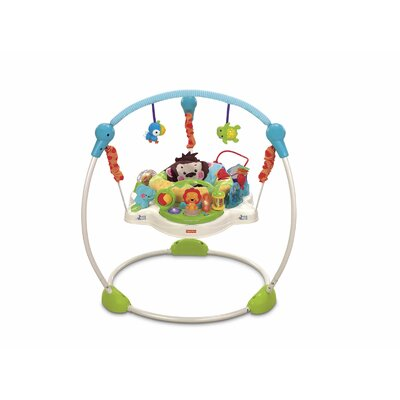 Fisher-Price Precious Planet Sky Jumperoo