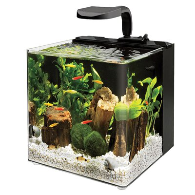 Aqueon wayfair for Aqueon fish tank