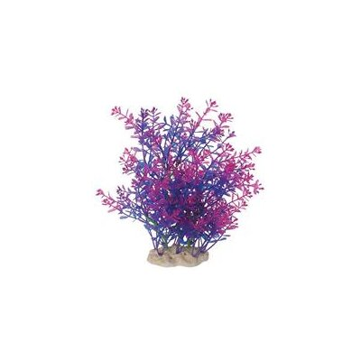 Pure Aquatic Natural Elements Lindernia Technicolor Aquarium Ornament in Purple