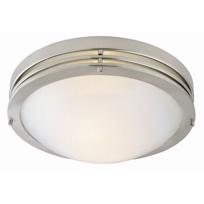 120V 2 Light Flush Mount