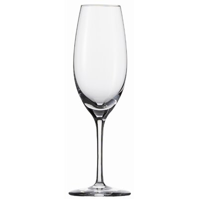Schott Zwiesel Tritan Cru Classic 8.4 Oz Champagne Glass (Set of 6)