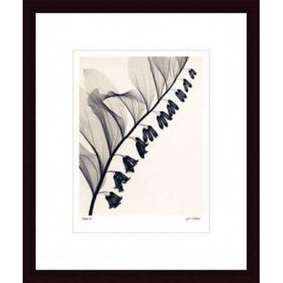 Barewalls Solomon's Seal Wood Framed Art Print