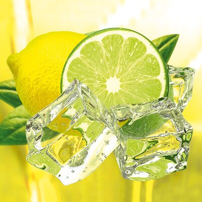 Deco Glass Fresh Lemon and Lime Wall Decor