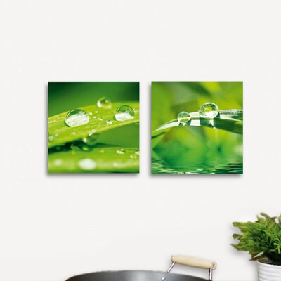 Deco Glass After the Rain Wall Decor (Set of 2)