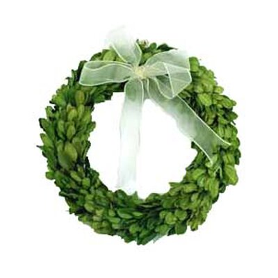 "Mills Floral Boxwood 8"" Wreath Round with Ribbon"