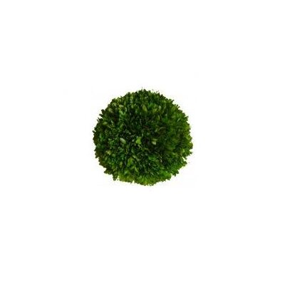 Mills Floral Boxwood Ball