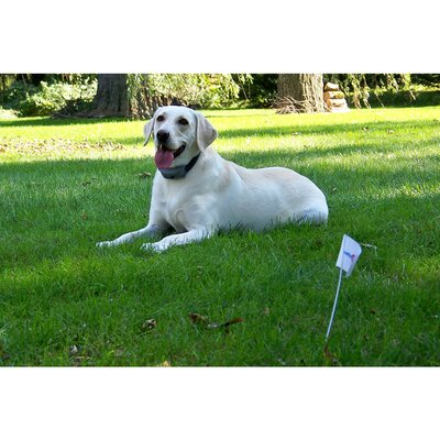 Havahart Wireless Radial Shape 2 Wireless Electric Dog Fence