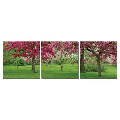Cherry Blossoms Modern Wall Art Decoration