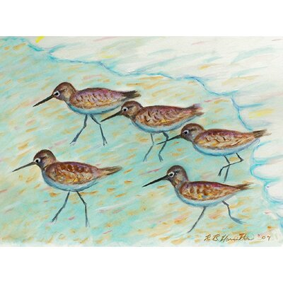 Betsy Drake Interiors Coastal Sandpipers Outdoor Wall Hanging
