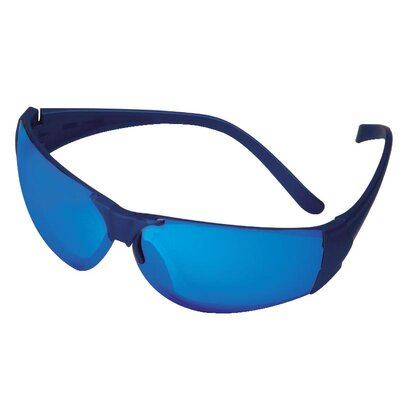 Pro 6 Safety Glasses