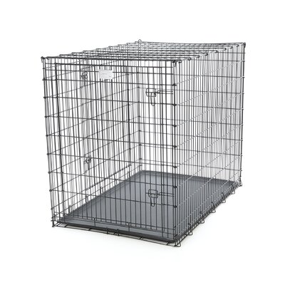 Midwest Homes For Pets Solutions Double-Door Large Dog Crate