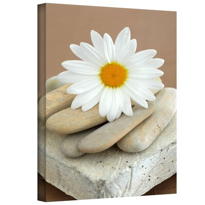 Art Wall Elena Ray 'Daisy and Stones' Gallery-Wrapped Canvas Wall Art