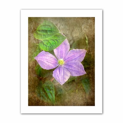David Liam Kyle 'Flowers in Focus II' Unwrapped Canvas Wall Art