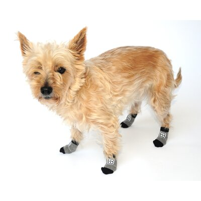 PetEgo Pet Socks (Set of 4)