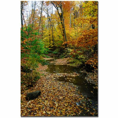 "Trademark Fine Art Autumn Stream by Kurt Shaffer, Canvas Art - 24"" x 16"""