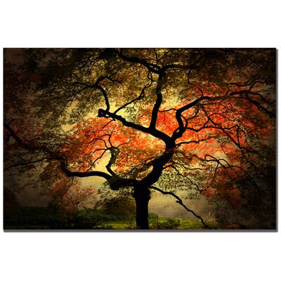 "Trademark Fine Art Japanese by Philippe Sainte-Laudy, Canvas Art - 30"" x 47"""