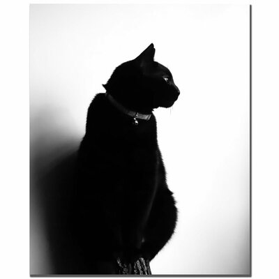 "Trademark Fine Art Chat Noir by Tammy Davison, Canvas Art - 32"" x 26"""