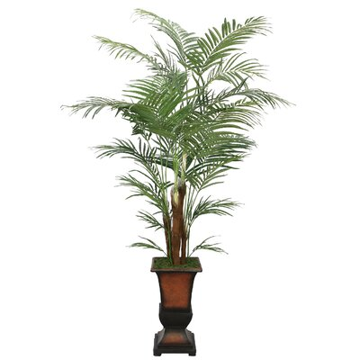 Laura Ashley Home Realistic Areca Palm Tree in Decorative Planter