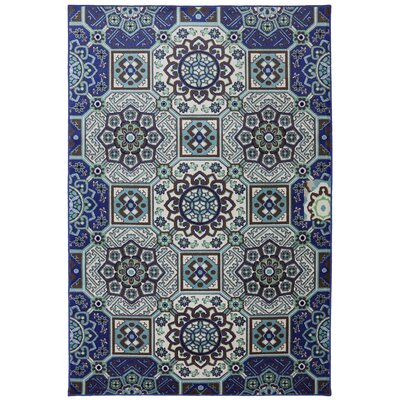 Panoramic Wildaster Ornamental Mosaic Fountain Rug