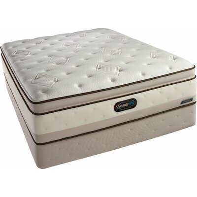 Simmons TruEnergy Ivy Plush Firm Memory Foam Top Mattress