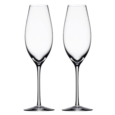 Orrefors Difference Sparkling Wine Glass (Set of 2)