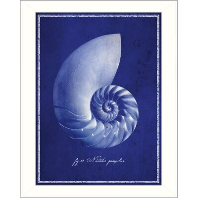 Nautilus Shell Wall Art