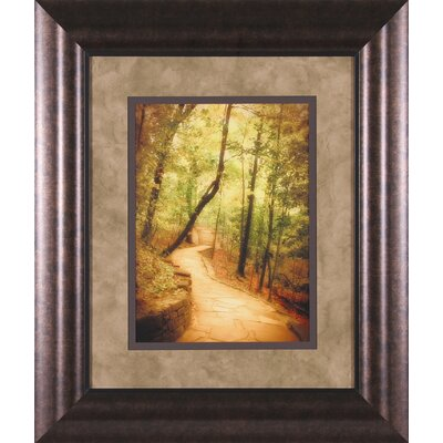 Art Effects Emerald Path Framed Artwork